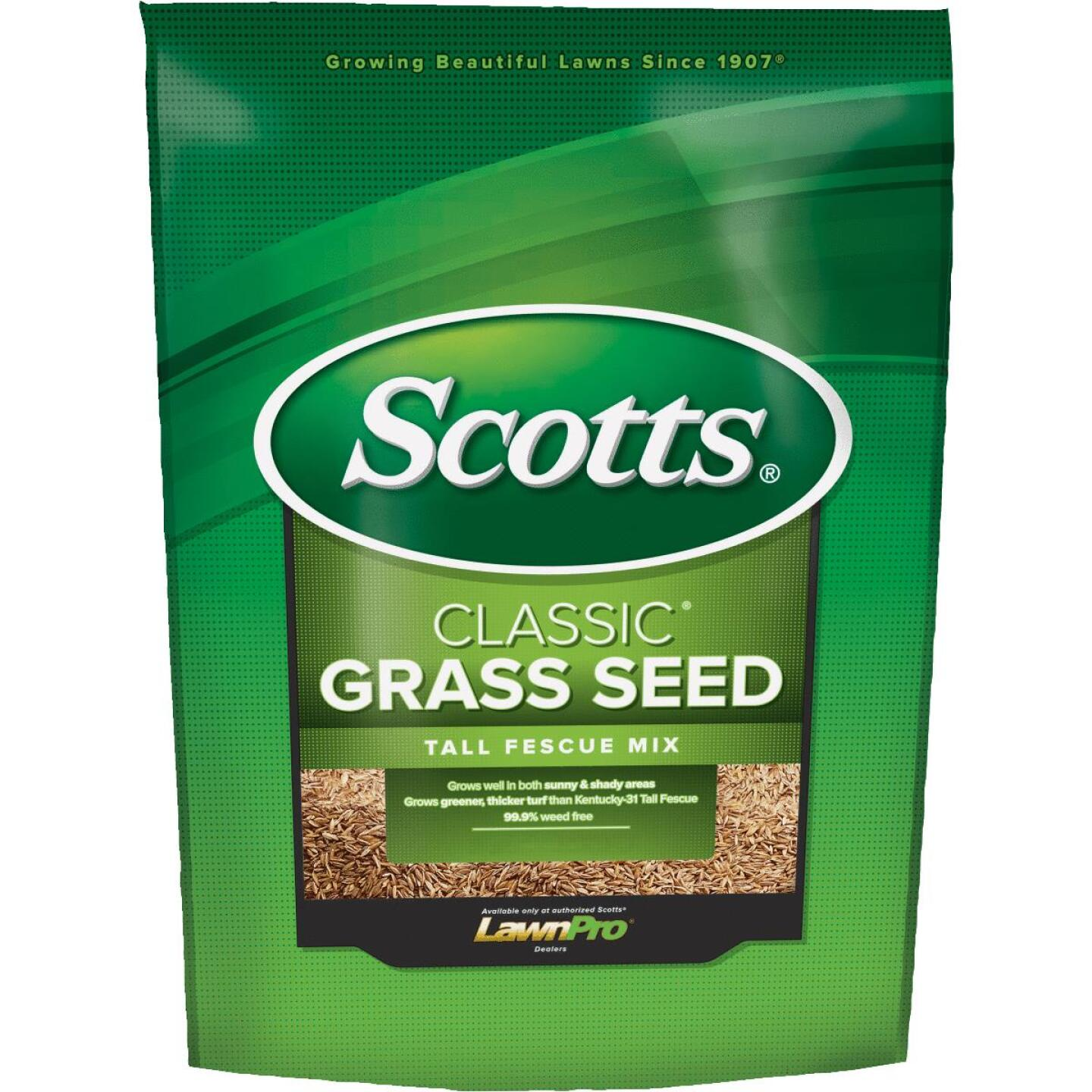 Scotts Classic 3 Lb. 650 Sq. Ft. Coverage Tall Fescue Grass Seed Image 1