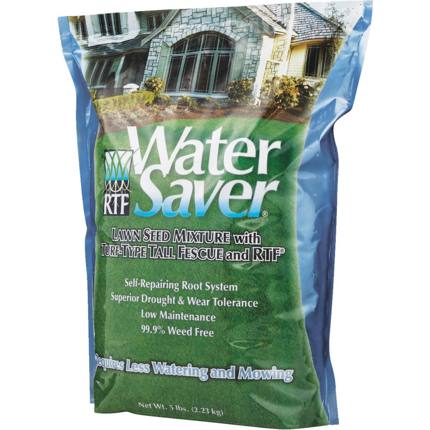 Water Saver 5 Lb. 500 Sq. Ft. Coverage Tall Fescue Grass Seed Image 2