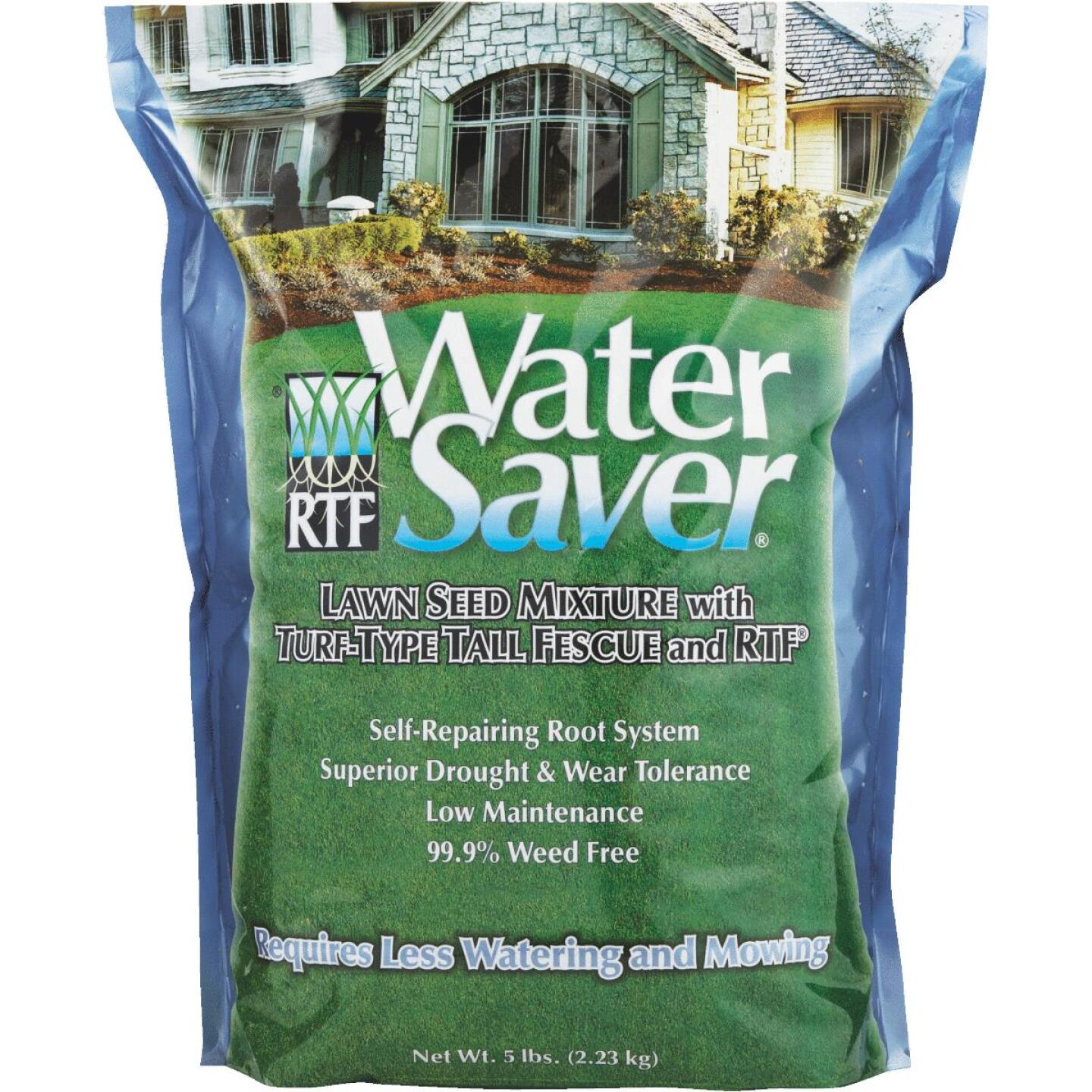 Water Saver 5 Lb. 500 Sq. Ft. Coverage Tall Fescue Grass Seed Image 1