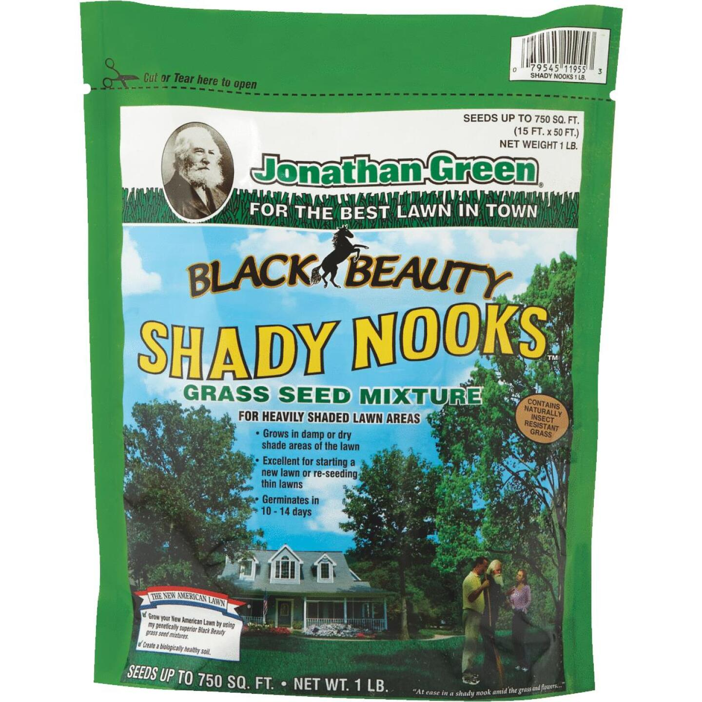 Jonathan Green Black Beauty 1 Lb. 375 Sq. Ft. Coverage Trivialis, Fescue, Ryegrass Grass Seed Image 1