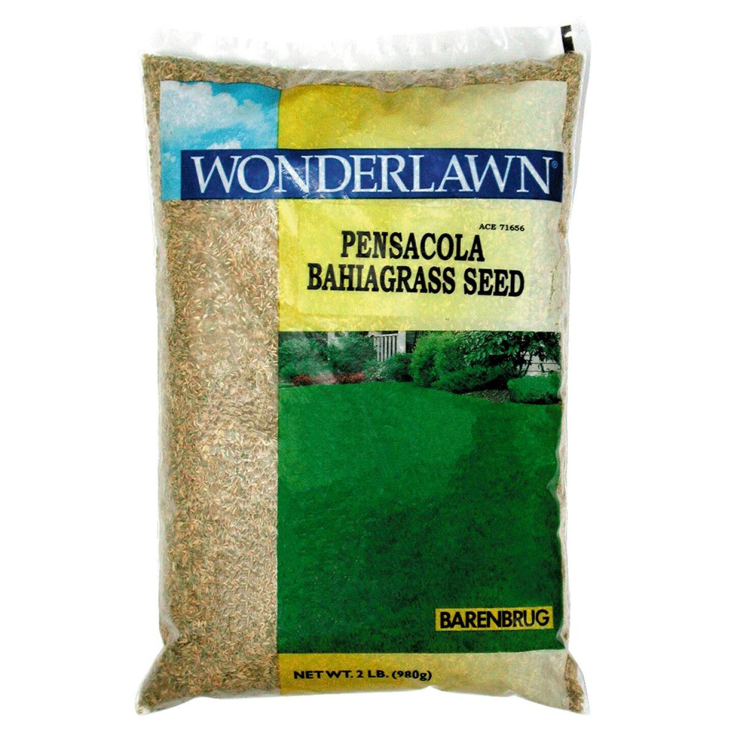 Wonderlawn 2 Lb. 450 Sq. Ft. Coverage 100% Pensacola Bahiagrass Grass Seed Image 1