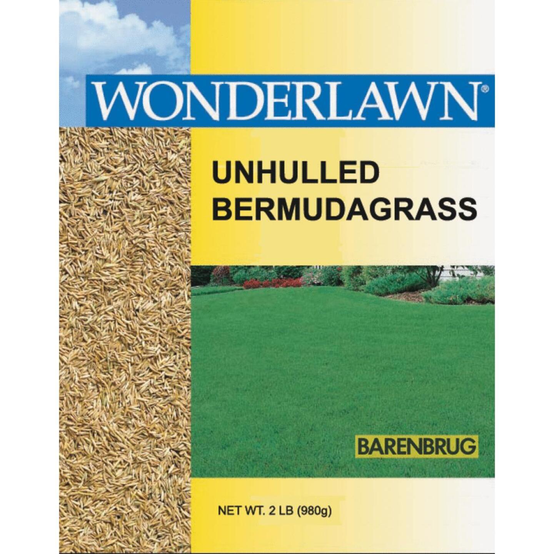 Wonderlawn 2 Lb. 400 Sq. Ft. Coverage 100% Unhulled Bermudagrass Grass Seed Image 1